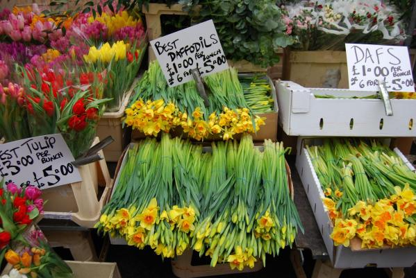 Nos 10 spots Kids Friendly de l'East London : Columbia Flower Market
