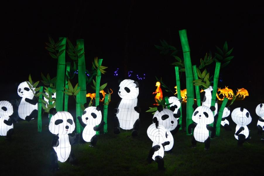 festival des Lanternes Londres