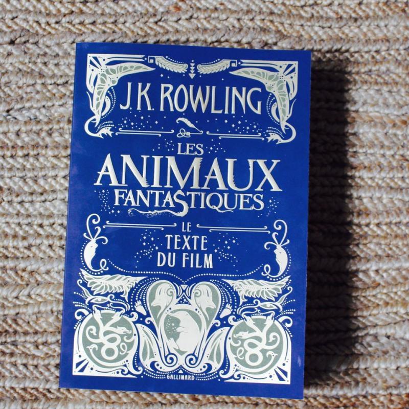 week-end lecture # 140 : Les animaux fantastiques, le texte du film