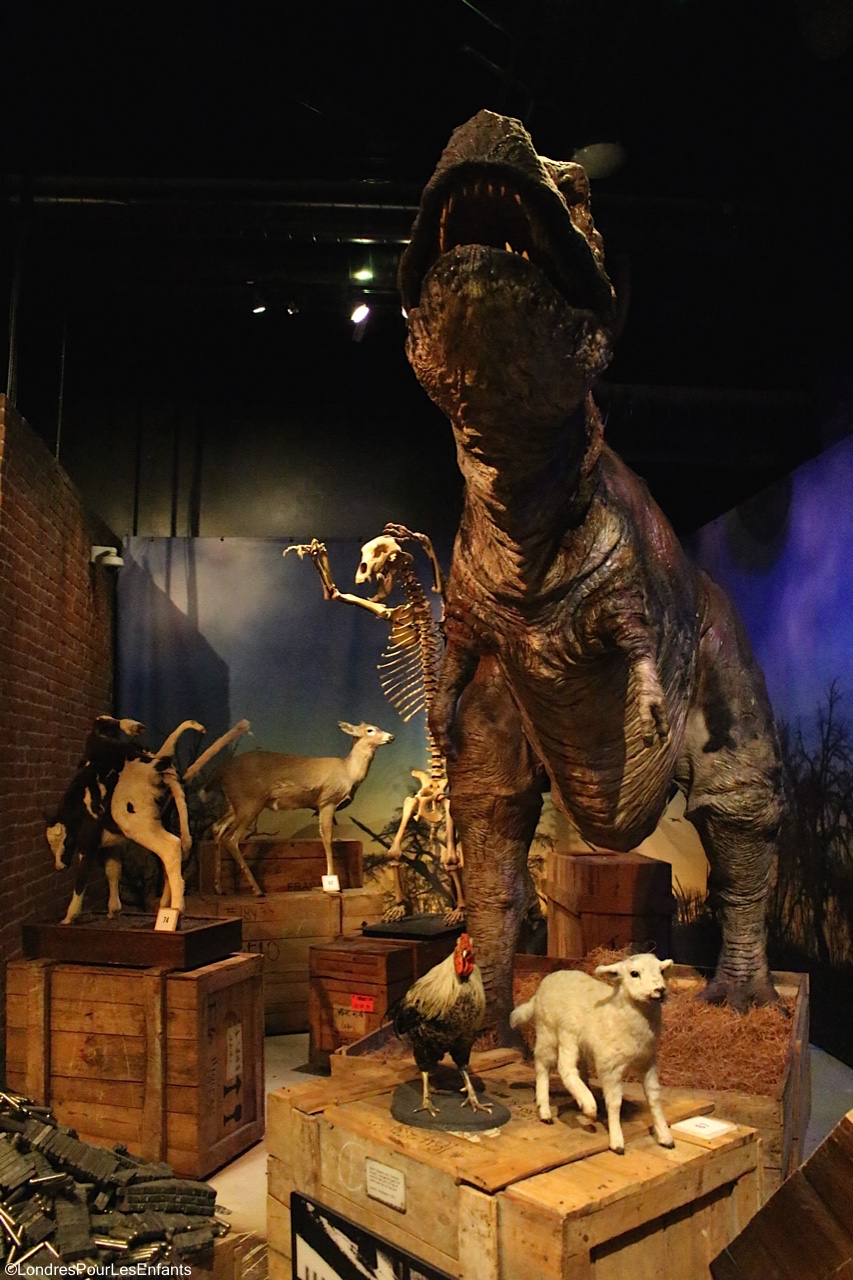 RIpley's believe it or not: Incroyable mais vrai!