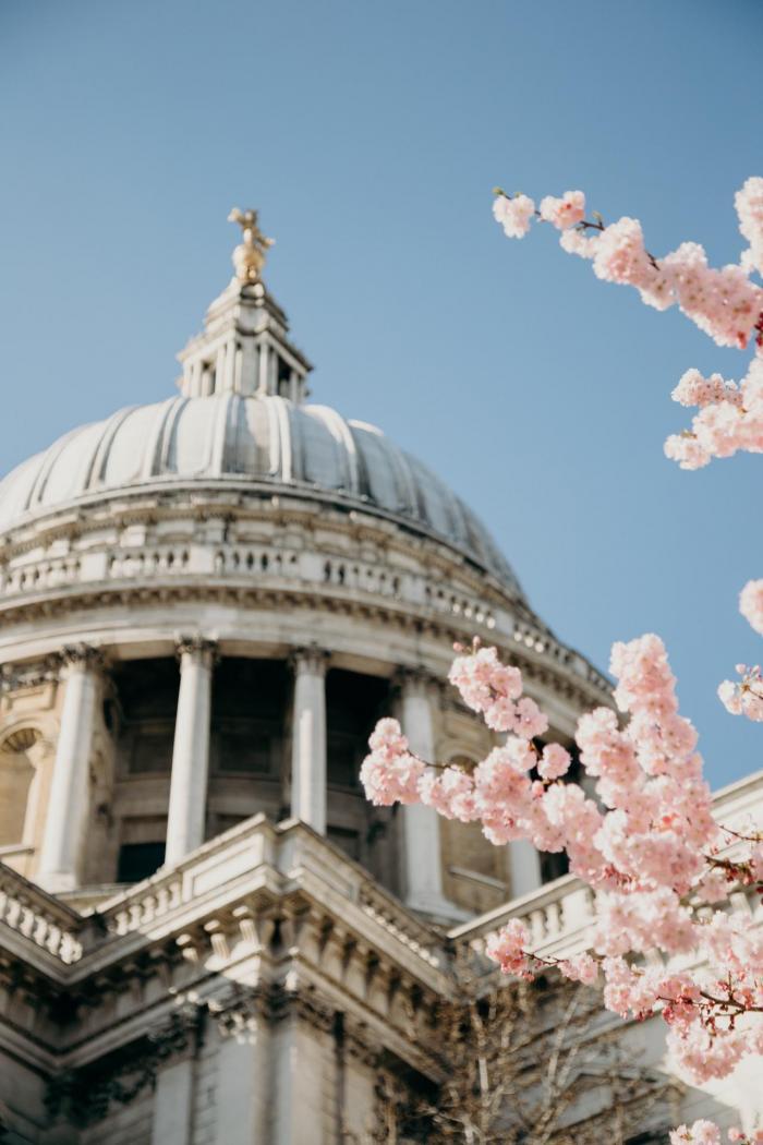 Où voir les cerisiers en fleurs à Londres ?